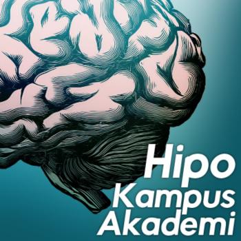 Hipokampus Akademi